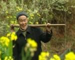 《收藏·中國》興國山歌