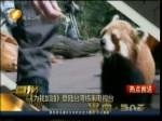 《为我加油》登陆台湾纬来电视台