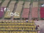 台湾女生献唱《祖地》主题曲