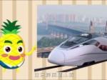 凤梨家族看两会——乘着高铁去旅行