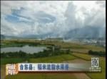 台东县:稻米流脂水果香