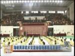 海峡两岸武术交流会现场赛在北京举行