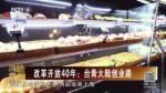 改革开放40年:台青大陆创业路